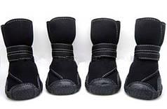 #Обувь для собак