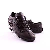 Мужские туфли Mida (34656)
