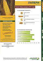 Семена кукурузы - ЛАПЕРИ ФАО 260 Коссад Семанс