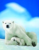 Белая медведица с медвежонком 100 элементов. Eurographics (8104-1198)