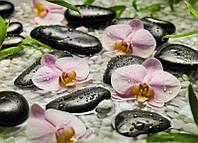 Фотообои на плотной полуглянцевой бумаге для стен 254*184 см из 4 листов: Цветы орхидеи и камни