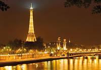 Фотообои на плотной полуглянцевой бумаге для стен 254*184 см из 4 листов: Ночной Париж, Эйфелевая башня