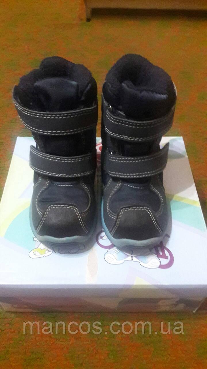 bae3889e367b06 Купить Зимние термо ботинки (сапоги) Flamingo DС3502. - 391796592