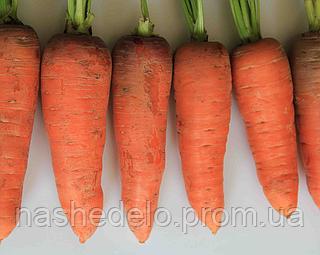 Семена моркови Танжерина F1 100 000 сем TAKI SEED