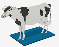 Дезковрик ветеринарный 65*100*3 см