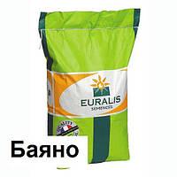 Гибрид подсолнечника Евралис ЕС Баяно (Euralis)