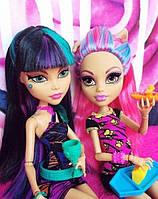 Крипатерия и куклы Monster High Хоулин Вульф и Клео (Howleen Wolf, Cleo) Крипатерия Монстер Хай Школа монстров