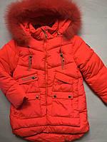 Куртка зимняя, цвет кораловый для девочки 104-128