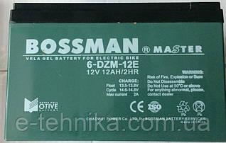 Аккумуляторы к электровелосипедам Bossman 6-DZM-12E
