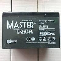 Аккумуляторы к электровелосипедам Master 6-DZM-12.5