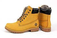 Ботинки женские зимние Timberland Тимберленд желтые, бежевые