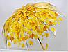 """Зонт - трость прозрачный """"Листья"""" желтый"""