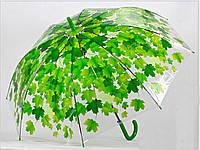 """Зонт - трость прозрачный """"Листья"""" зеленый, фото 1"""
