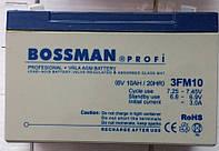 Аккумуляторы к электровелосипедам Bossman 3FM10
