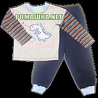 Детская плотная пижама для мальчика р. 116 ткань ФУТЕР ДВУХНИТКА ТМ Мамина мода 3223 Серый