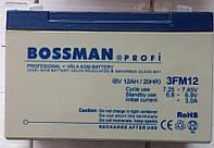 Аккумуляторы к электровелосипедам Bossman 3FM12
