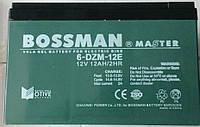 Аккумуляторы к электровелосипедам Bossman 6-DZM-12E, фото 1