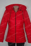 Женская  молодежная демисезонная куртка Катрин красная