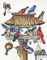 "DMS-03209 ""Птичий обед"" набор для вышивания DIMENSIONS"