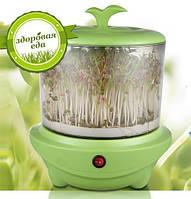 Проращиватель семян и зерен ASTOR  выращивание в домашних условиях