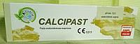 Материал для временного пломбирования корневых каналов CALCIPAST