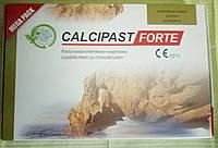 Материал для временного пломбирования корневых каналов CALCIPAST FORTE (MEGA PACK)