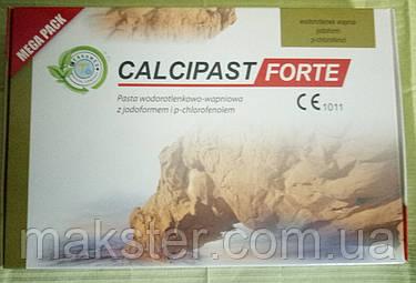 Материал для временного пломбирования корневых каналов CALCIPAST FORTE (MEGA PACK), фото 2
