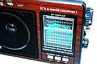 Портативная акустическая система GOLON RX-9966UAR, фото 3