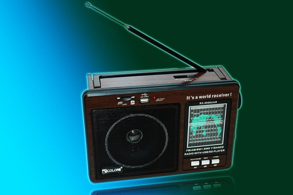 Портативная акустическая система GOLON RX-9966UAR