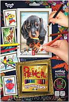 Раскраска по номерам Danko Toys