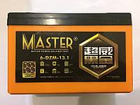 Аккумуляторы к электровелосипедам Master 6-DZM-13.1, фото 1
