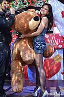 Огромный плюшевый медведь коричневого цвета