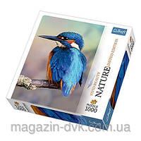 Пазлы  1000 Зимородак птичка 10515