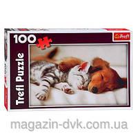 Пазлы  100 животные спящие друзья 16138