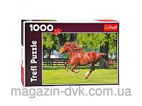 Пазлы  1000 Мчатся кони 10201 лошади