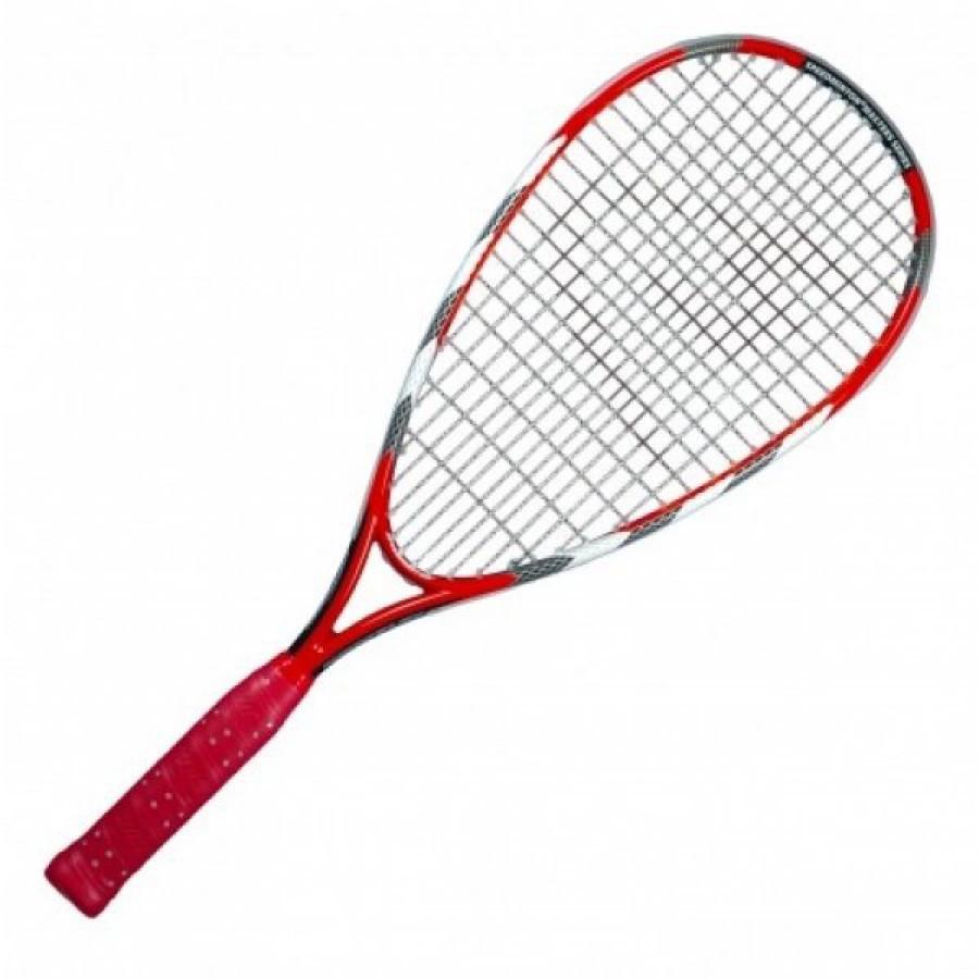 Ракетка для спидминтона Speedminton Racket Viper it - Фора Спорт в Полтаве