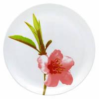 Тарелка обеденная круглая 25см Luminarc Water Color, 168219, /П1