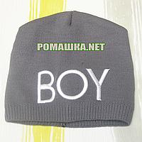Детская весення, осенняя вязаная шапочка р. 52 без подкладки хорошо тянется ТМ Аника 3227 Коричневый
