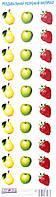 Раздаточный разрезной материал (груша, яблоко, клубника) 2996
