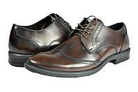 """Мужские туфли """"классические"""" из натуральной кожи. levus 039.2 коричневые   весенние"""