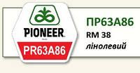 Подсолнечник семена Pioneer PR63A86 (ПР63А86)