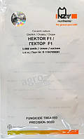 Огурец Гектор F1, 1000шт. Nunhems, фото 1