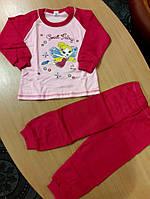 Детская теплая пижама на баечке для девочки Пчелка малиновая 116 размер