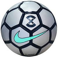 Мяч для футзала Nike FootballX Premier SC3100-010