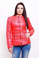 Жіноча демісезонна куртка рожевого кольору