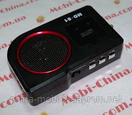 Портативная колонка-радио MD-81 MP3 SD USB FM, фото 2
