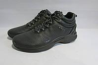 Мужские зимние кожаные кроссовки ECCO (8336) темно серые 3002А