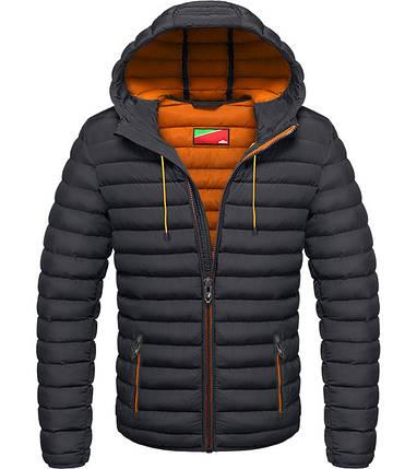 Куртка на зиму 2017, фото 2