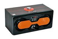 Портативная акустика с радио SU-28: USB порт, 3.5 мм AUX-разъём, аккумулятор, пульт ДУ