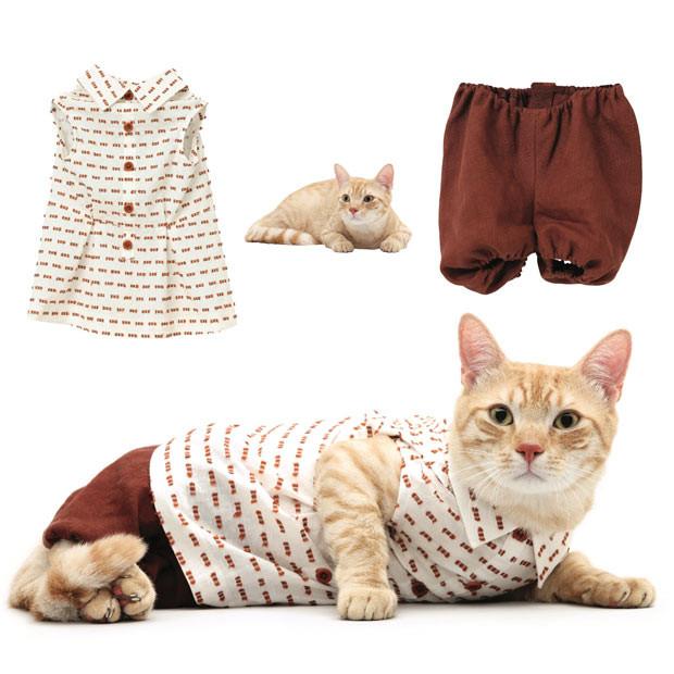 Одежда для котов и кошек